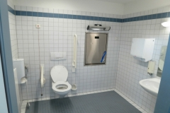 green-toilet1